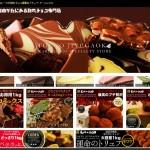 チュベドショコラ【特別価格】高級クーベルチュール割れチョコ専門通販
