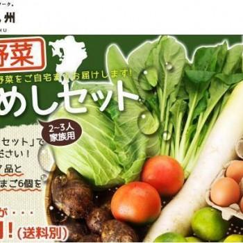 【はたちょく九州】 九州野菜おためしセット